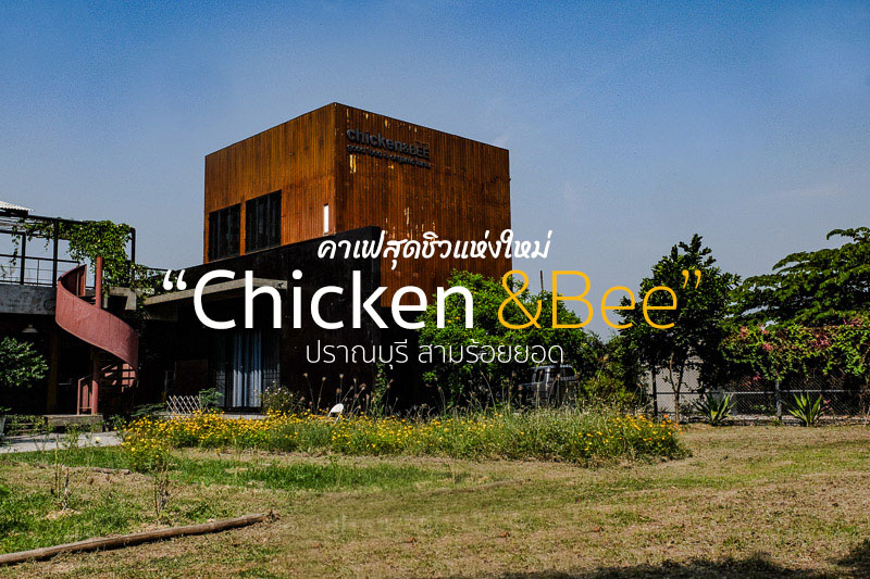 ร้าน Chicken and Bee